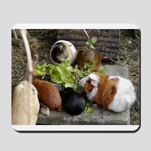 Guinea Pig Luncheon Mousepad