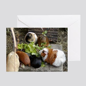 Guinea Pig Luncheon Greeting Cards (Pk of 10)
