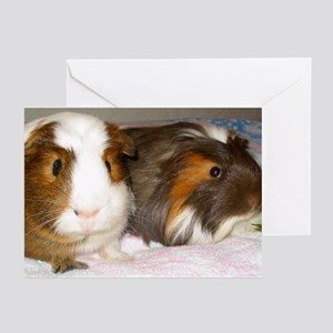 Guinea Pig Buddies Greeting Cards (Pk of 10)