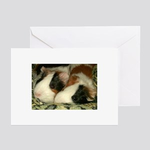 Sleeping Guinea Pigs Greeting Cards (Pk of 10)