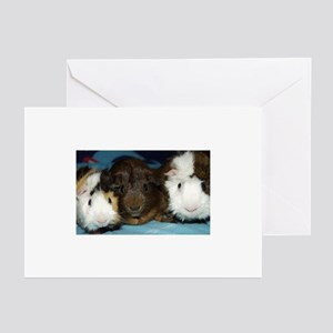 Squeeze in There! Greeting Cards (Pk of 10)