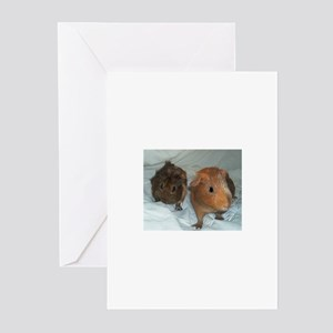 Exploring Pigs Greeting Cards (Pk of 10)