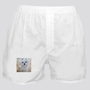 Maltese Blue Bows Boxer Shorts