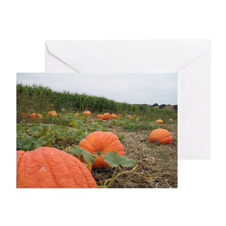 October Harvest Greeting Cards (Pk of 10)