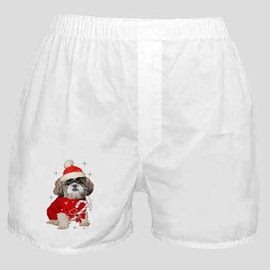 Shih Tzu Santa Paws Boxer Shorts