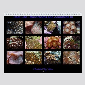 Mushrooms and Zoanthids III Wall Calendar