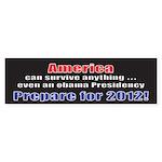 America 2012 Bumper Sticker (50 pk)