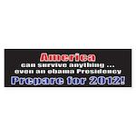 America 2012 Bumper Sticker (10 pk)