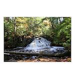 oddFrogg Michigan Waterfall Postcards (8 Pk)