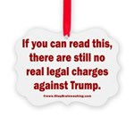 If you can read this, Trump Picture Ornament