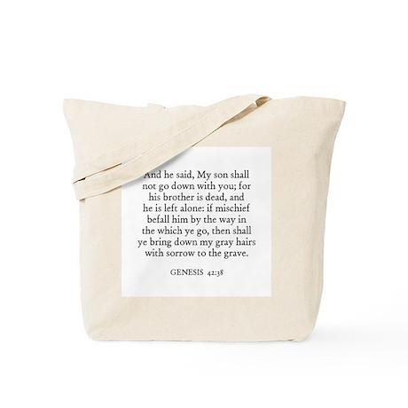 GENESIS 42:38 Tote Bag