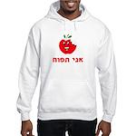 Ani Tapuach Hooded Sweatshirt