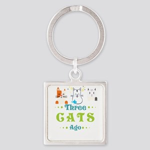 I Was Normal 3 Cats Ago Funny Cat Lover Keychains
