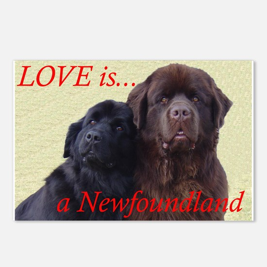 Cute Newfs Postcards (Package of 8)