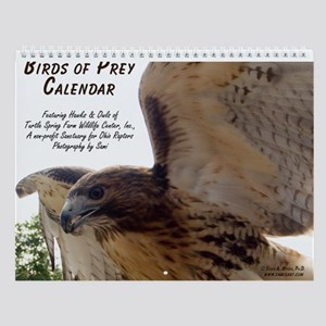 Birds of Prey Calendar Wall Calendar