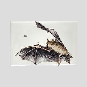 Bat for Bat Lovers Rectangle Magnet
