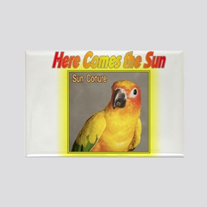Sun Conure Rectangle Magnet