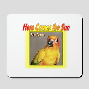Sun Conure Mousepad
