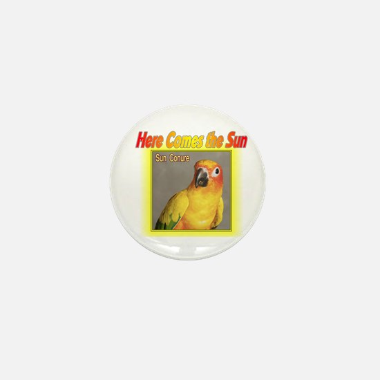 Sun Conure Mini Button