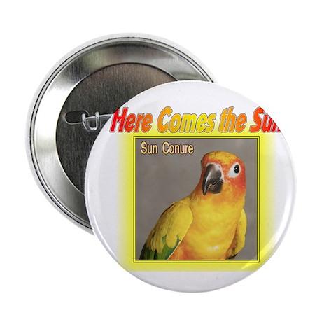 "Sun Conure 2.25"" Button (100 pack)"