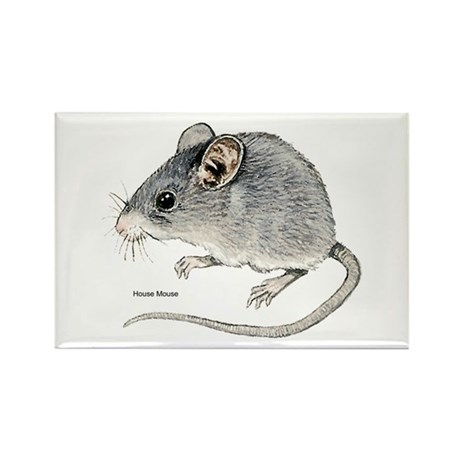 Mouse Rodent Rectangle Magnet