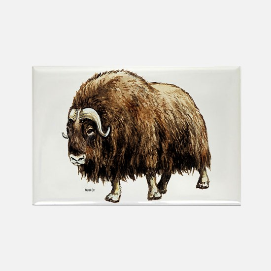 Musk Ox Artic Rectangle Magnet