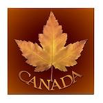 Canada Coasters Canadian Art Souvenir Coasters