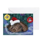 Solomon Rabbit Christmas greeting Cards (Pk of 20)