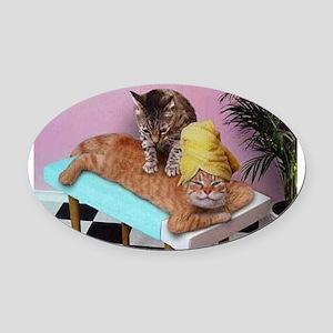 Funny Cat Massage Oval Car Magnet