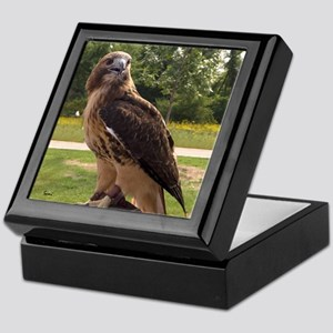 Red tail hawk (2) Keepsake Box