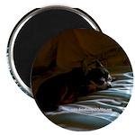 Darkside of Precious the DOG Magnet