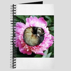 Ferret in Flower Journal