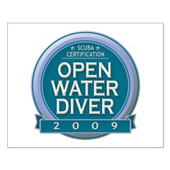 https://i3.cpcache.com/product/327289481/open_water_diver_2009_posters.jpg?side=Front&height=240&width=240