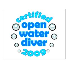 https://i3.cpcache.com/product/327322059/open_water_diver_2009_posters.jpg?side=Front&height=240&width=240