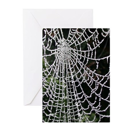 Ice-Encrusted Web Solstice Cards (Pk of 10)