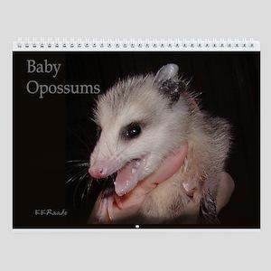 Baby Possum Wall Calendar