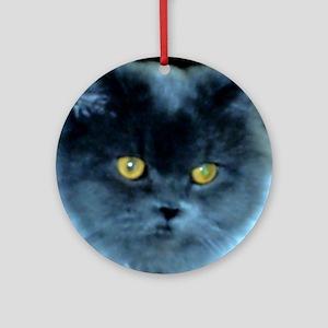 Exotic Blue Persian Cat Round Ornament