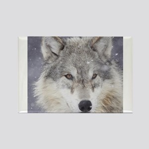 x10 Wolf Magnets
