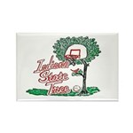2-Ind state tree Magnets