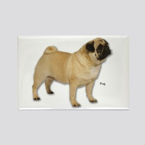 Pug Dog for Pug Lovers Rectangle Magnet