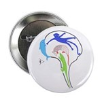 """Evolved Brain 2.25"""" Button (10 pack)"""