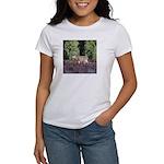 Buck in Afternoon Sunlight Women's T-Shirt