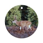 Buck in Afternoon Sunlight Ornament (Round)