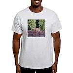 Buck in Afternoon Sunlight Light T-Shirt