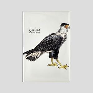 Crested Caracara Bird Rectangle Magnet