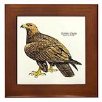 Golden Eagle Bird Framed Tile