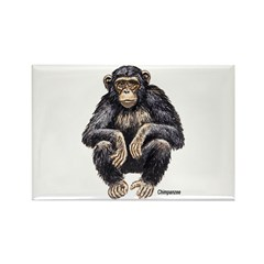 Chimpanzee Monkey Ape Rectangle Magnet