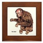 Red Uakari Monkey Framed Tile