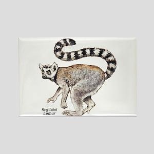 Ring-Tailed Lemur Rectangle Magnet