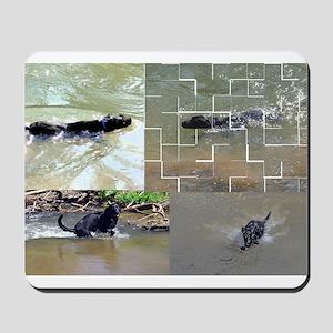 swim Mousepad